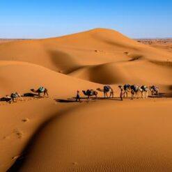 12-daagse Fly & Drive Zuiden van Marokko - Singletravels.nl
