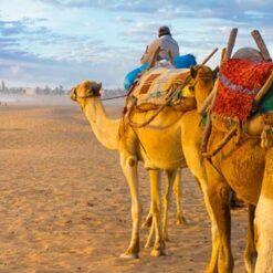 9-daagse combinatiereis Marrakech & Agadir - Singletravels.nl