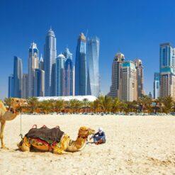 Dubai en Oman - Singletravels.nl