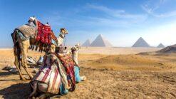 Prachtig Egypte - Singletravels.nl