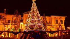 Kerst op Cyprus - Singletravels.nl