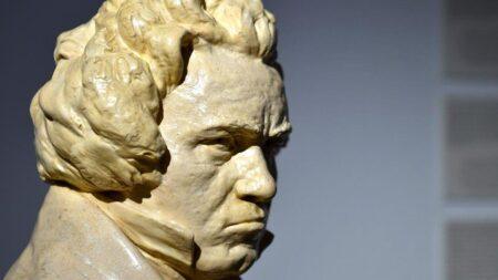 In het voetspoor van Beethoven - Singletravels.nl