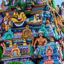 22-daagse rondreis Grand Tour Sri Lanka - Singletravels.nl