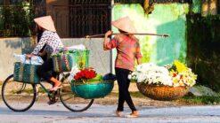 17-daagse rondreis Highlights van Vietnam - Singletravels.nl