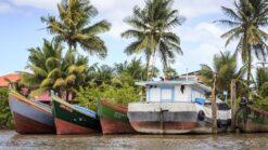 9-daagse rondreis Kleurrijk Suriname - Singletravels.nl