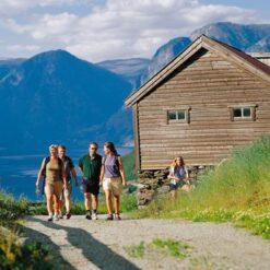 10-daagse fly-drive Wandelen in Fjord-Noorwegen - Singletravels.nl