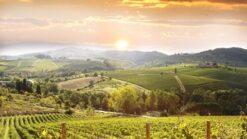 8-dg rondreis Toscane
