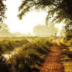 7-daagse Fietsreis Oost-Nederland - Singletravels.nl