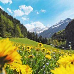 8-daagse singlereis Wandelen in Tirol - Singletravels.nl