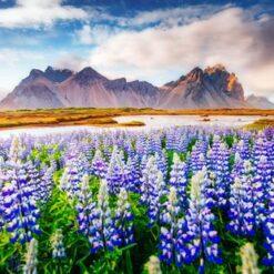 15-daagse cruise Noorwegen